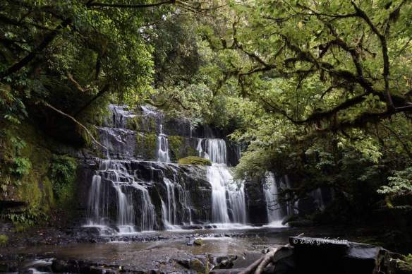 Purakaunui Falls 1